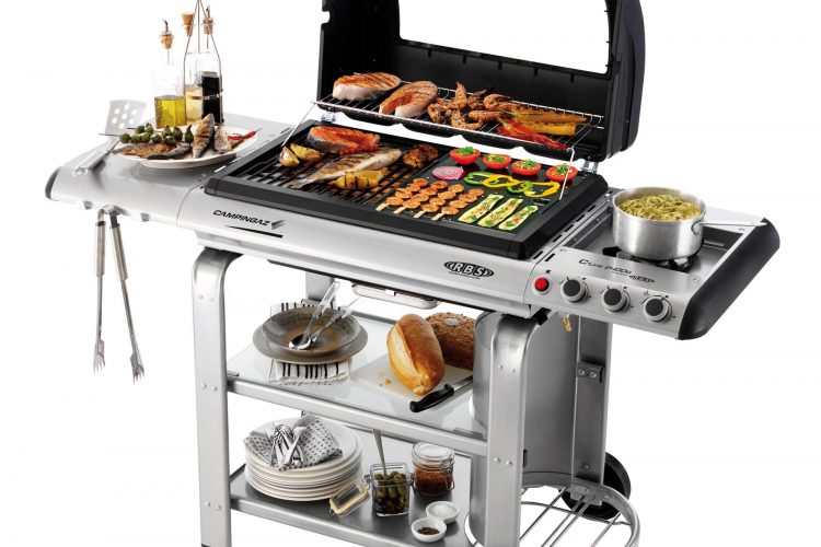 Faut il choisir un barbecue weber plume for Barbecue weber gaz q120
